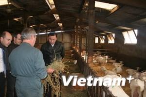 Vụ sữa dê Danlait: Mục sở thị dây chuyền tại Pháp