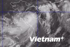 Bão tiến thẳng vào các tỉnh từ Thái Bình đến Hà Tĩnh