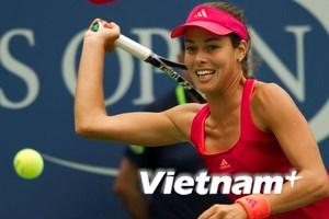 """Serena """"nuốt"""" Ivanovic"""