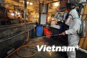 Trung Quốc: Thêm 1 ca tử vong vì cúm gia cầm H7N9
