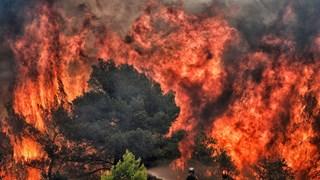 Mỹ: Hàng chục nghìn người tại Los Angeles phải sơ tán do cháy lớn