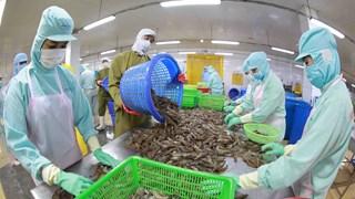 [Video] Hoa Kỳ không hạn chế thương mại với hàng hóa Việt Nam