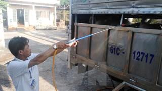 Kiểm soát chặt việc vận chuyển lợn và sản phẩm từ thịt lợn