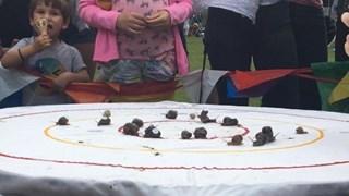 [Video] Ấn tượng cuộc đua 'tốc độ' ốc sên thế giới tại Anh