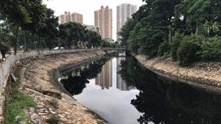 Tổng cục Môi trường: Chất lượng nước sông của Hà Nội vẫn ô nhiễm nặng