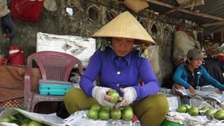 Xúc tiến thương mại giúp đưa trái cây Tiền Giang hội nhập