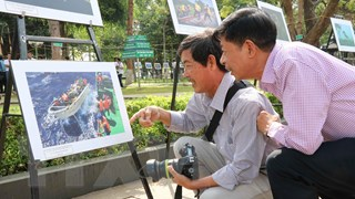 11 tác phẩm giành giải Liên hoan ảnh nghệ thuật khu vực Bắc Trung Bộ