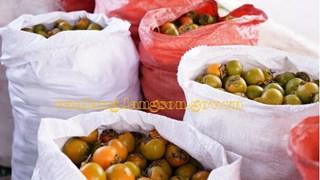 Lạng Sơn: Thiết lập gian hàng số tiêu thụ sản phẩm hồng vành khuyên