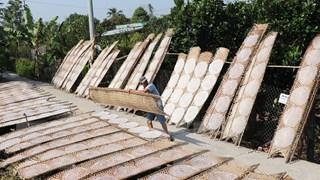 [Photo] Làng bánh tráng Hậu Thành ở Tiền Giang vào mùa Tết