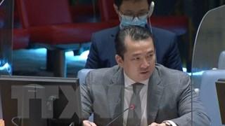 Hội đồng Bảo an: Việt Nam lên án hành vi sử dụng vũ khí hóa học