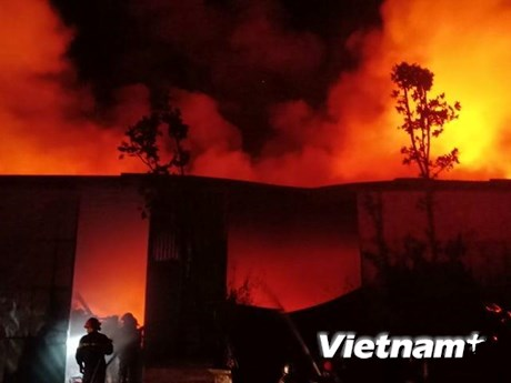 Hà Nội: Cháy lớn tại khu vực Viện điều tra quy hoạch rừng lúc nửa đêm | Xã hội | Vietnam+ (VietnamPlus)