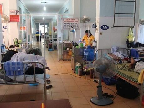 Dịch sốt xuất huyết tại Quảng Bình diễn biến rất phức tạp | Y tế | Vietnam+ (VietnamPlus)