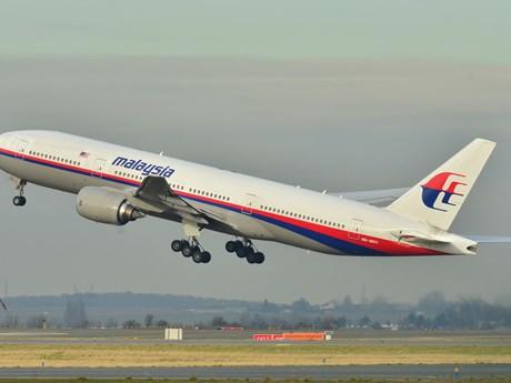 Thêm tiết lộ gây sốc về nguyên nhân khiến máy bay MH370 mất tích | ASEAN | Vietnam+ (VietnamPlus)