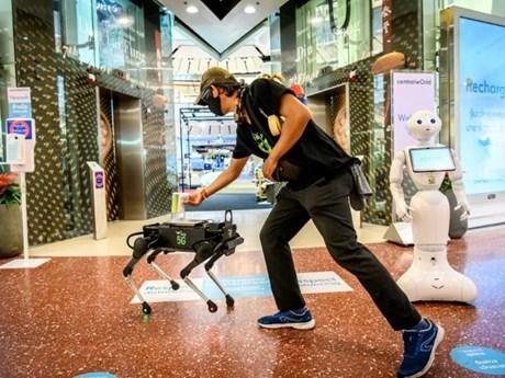 Thái Lan dùng robot giúp người dân mua sắm an toàn trong mùa dịch
