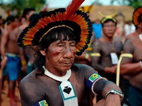 LHQ: Cộng đồng thổ dân Amazon đối mặt với nhiều nguy cơ do COVID-19