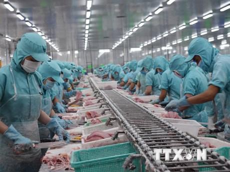 Phòng Thương mại Liên bang Áo ấn tượng về sự phát triển của Việt Nam