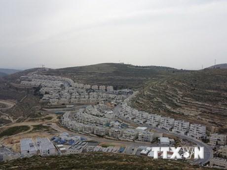 OIC cảnh báo về kế hoạch của Israel sáp nhập khu Bờ Tây | Trung Đông | Vietnam+ (VietnamPlus)