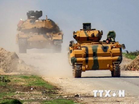 Nga và Thổ Nhĩ Kỳ hoãn các cuộc hội đàm về Libya và Syria | Châu Âu | Vietnam+ (VietnamPlus)