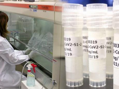 Nhật: Một số tổ chức nghiên cứu vắcxin phòng COVID-19 bị tấn công mạng