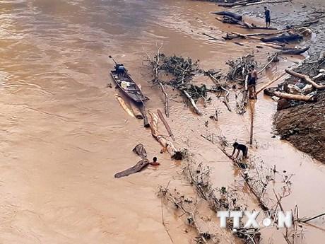 Hình ảnh người dân liều mình vớt củi giữa dòng nước lũ ở Thanh Hóa