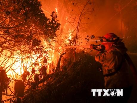 """[Photo] Các đám cháy rừng lan rộng, California chìm trong """"biển lửa"""""""
