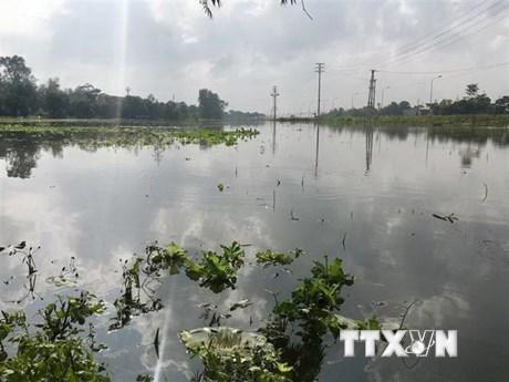 Mưa lớn kéo dài 3 ngày, một số tai nạn đáng tiếc xảy ra ở Nghệ An | Môi trường | Vietnam+ (VietnamPlus)
