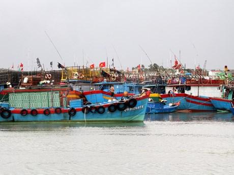 Ứng phó với cơn bão đang tiến vào Biển Đông và gió mùa Đông Bắc | Môi trường | Vietnam+ (VietnamPlus)