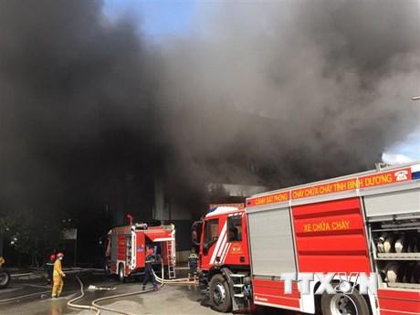 Cháy lớn tại nhà xưởng sản xuất giường, tủ rộng hơn 2.000m2 | Xã hội | Vietnam+ (VietnamPlus)