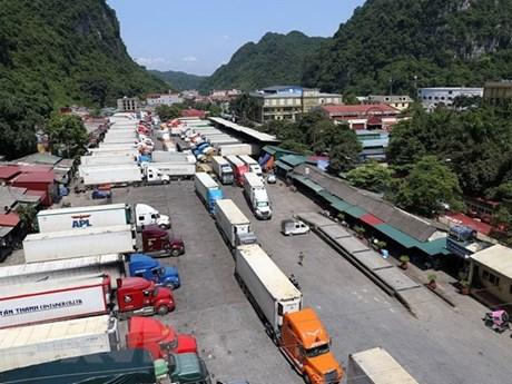 Cắt giảm chi phí logistics - giải pháp nâng cao chuỗi giá trị nông sản | Kinh doanh | Vietnam+ (VietnamPlus)