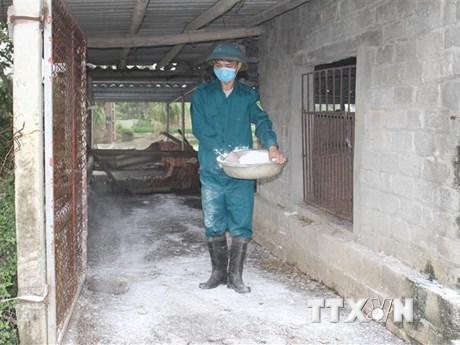 Thủ tướng yêu cầu triển khai giải pháp phòng, chống cúm gia cầm