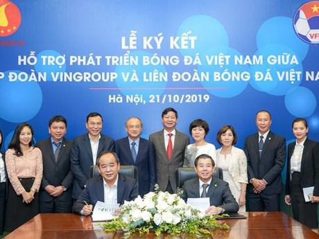 Vingroup và VFF ký thỏa thuận hợp tác hỗ trợ phát triển bóng đá Việt  | Bóng đá | Vietnam+ (VietnamPlus)