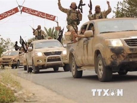 Syria: Liên minh SDF do Mỹ hậu thuẫn nối lại chiến dịch chống IS