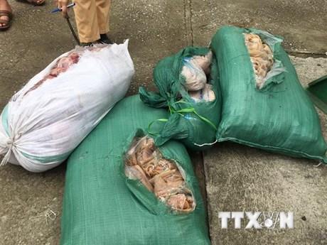 Thanh Hóa bắt giữ xe ôtô chở 260kg thịt lợn, da lợn ôi thiu