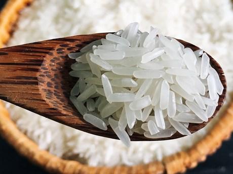 Nghiên cứu quy trình để ST thành thương hiệu gạo thơm Việt Nam