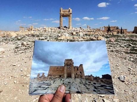 [Photo] Những minh chứng tố cáo sự tán phá của IS ở Palmyra