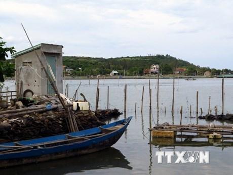 Phú Yên: Thắng cảnh quốc gia đầm Ô Loan bị vi phạm nghiêm trọng