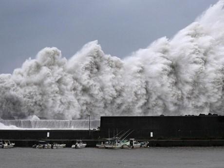 Những hình ảnh thể hiện sự tàn phá khủng khiếp của bão Jebi