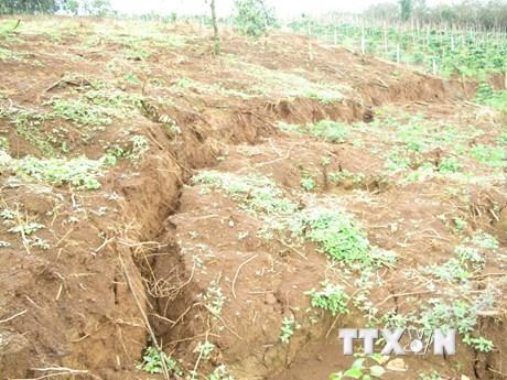 Tình trạng sụt lún nghiêm trọng gần hố bùn đỏ Alumin Nhân Cơ