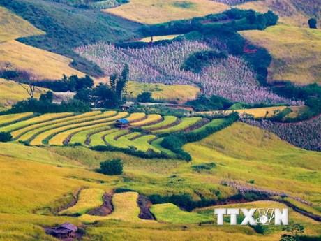 Chiêm ngưỡng vẻ đẹp hoang sơ của huyện vùng cao Điện Biên Đông