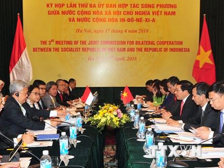 Năm 2018 là năm đặc biệt với quan hệ giữa Việt Nam và Indonesia