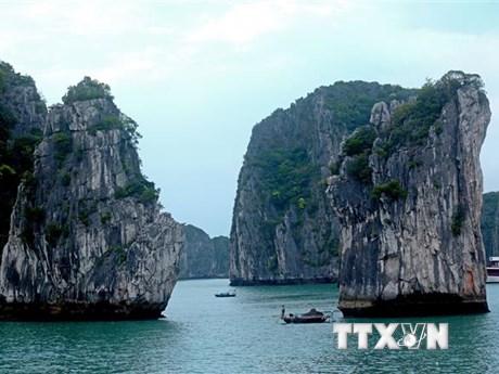 Va chạm với sà lan, tàu du lịch bị chìm trên vịnh Hạ Long   Xã hội   Vietnam+ (VietnamPlus)