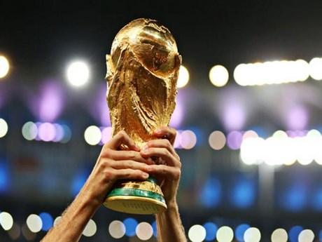FIFA chốt số đội dự vòng chung kết World Cup 2022 tại Qatar   Bóng đá   Vietnam+ (VietnamPlus)