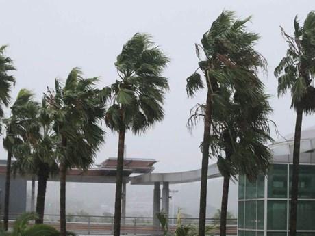 Bão Tapah đổ vào miền Tây Nam Nhật Bản, hàng trăm chuyến bay bị hủy