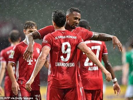 Hình ảnh đáng nhớ trong ngày Bayern Munich lên ngôi Bundesliga   Bóng đá   Vietnam+ (VietnamPlus)