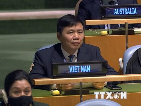 Việt Nam ủng hộ Hội đồng Bảo an tăng cường hợp tác với Tòa án Quốc tế