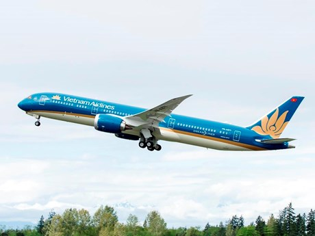 Vietnam Airlines tăng chuyến bay chở cổ động viên xem trận chung kết | Giao thông | Vietnam+ (VietnamPlus)