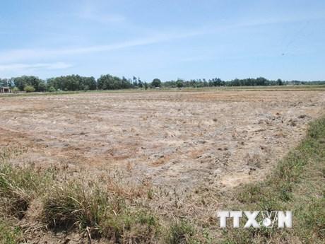 Các hồ chứa của Quảng Trị xuống mực nước chết, nhiều sông cạn trơ đáy