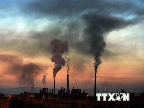 Ô nhiễm không khí ảnh hưởng tiêu cực đến trẻ sơ sinh như thế nào?