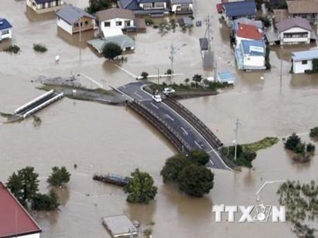 Một công dân Việt Nam mất tích khi siêu bão Hagibis đổ bộ vào Nhật Bản | Người Việt bốn phương | Vietnam+ (VietnamPlus)