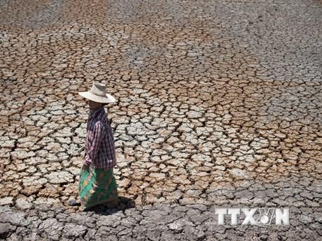 Cảnh báo hạn hán nghiêm trọng tại Campuchia, Lào, Thái Lan và Việt Nam